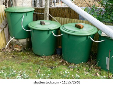 Four water Butts in a row in garden