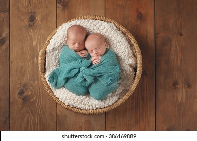 Four week old fraternal, twin baby boys swaddled in a turquoise blue wrap and sleeping in a wicker basket. Shot in the studio on a wooden background.