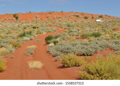 Four wheel drive vehicle on dry red sand dune with desert vegetation on the Canning Stock Route Western Australia