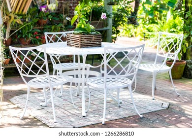 Four white cast iron chairs and table at outdoor or outside sitting garden or patio with potted orchid flowers, pots on sunny day