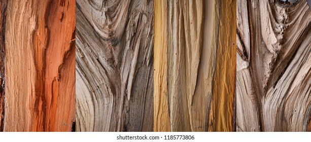 four woody textures, coarse wood fibers.