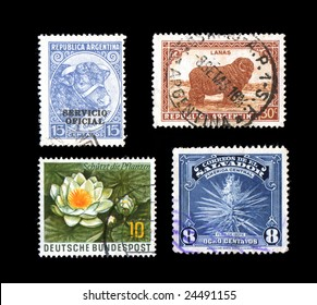 Four world postage stamps yucca flower isolated on black