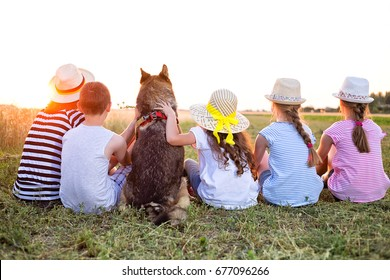 Four young caucasian kids, one adult female and wolf dog sitting
