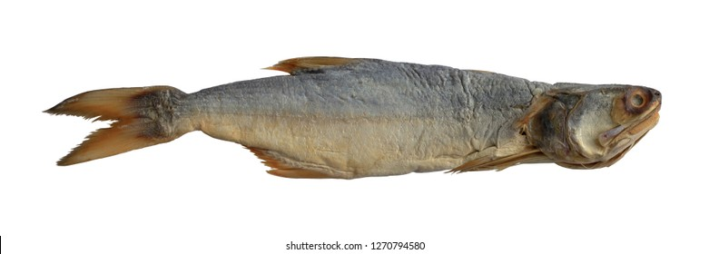Fourfinger threadfin dried fish isolated on white