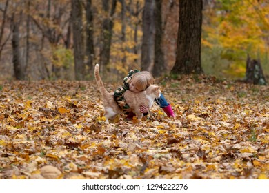 Four-year-old American blond female hugging yellow and white tabby cat outdoors in fall in he woods