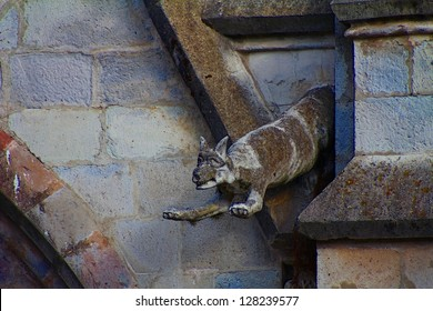 Fox gargoyle of the Basilica of the National Vow