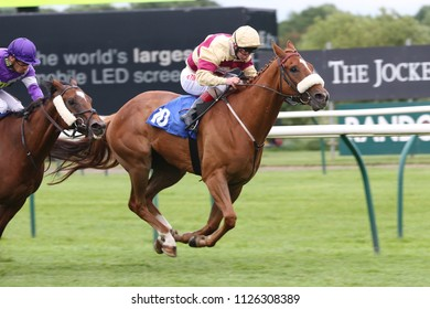 Foxy Rebel ridden by Franny Norton and trained by Ruth Carr wins the 1m 188Bet Handicap at Nottingham Races : Colwick Park, Nottingham, UK : 18 June 2018 : Pic Mick Atkins