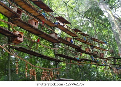Foz do Iguacu,, Brazil: Feb. 4, 2018 Parrot enclosure with red macaws at  Bird Park in Iguacu Falls, Parana, Brazil