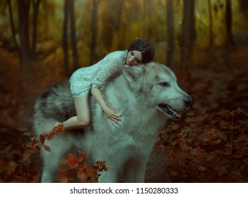 A fragile girl riding on a huge wolf, like Princess Mononoke. Sleeping Beauty. Alaskan Malamute is like a wild wolf. The background is a fabulous forest in warm autumn colors,  orange trees, leaves