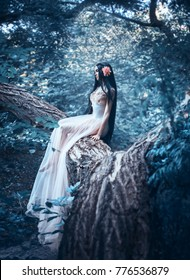 A fragile girl, in a transparent dress, sits on a tree. Unreal long hair. Artistic Photography