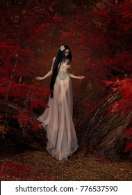 Fragile princess girl, in a transparent  pink dress. Unreal long dark hair. The background is fiery red autumn  trees. Art  Photography. Attractive, innocent virgin, young nymph spirit of the forest