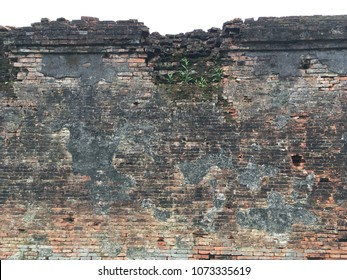 Fragment of an ancient collapsing brick wall with sprouted plants