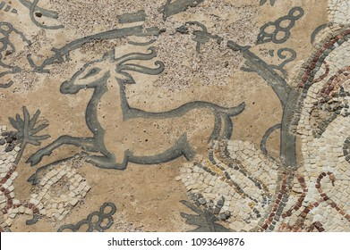 Fragment of an ancient floor mosaic in Caesarea National Park, Israel. Old floor mosaic in Herod`s Palace, Caesarea. Ancient city Caesarea with its ruins and mosaics is a famous tourist spot in Israel