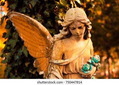 A fragment of ancient sculpture angel in a golden glow in the old cemetery. Symbol of love, invisible forces, purity, enlightenment, ministry. Chariot.