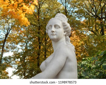 Fragment of a female statue on the background of autumn trees in the Summer Garden in St. Petersburg