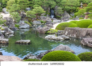 Fragment of a Japanese garden with a pond and conifers