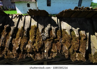 The fragment of the old wooden fence covered with moss around the churchyard in Maramures, Romania, in a sunny spring day. Travelling in Romania