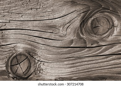 Fragment of old wooden weathered board with annual rings, cracked and faded gray surface as a texture, close up
