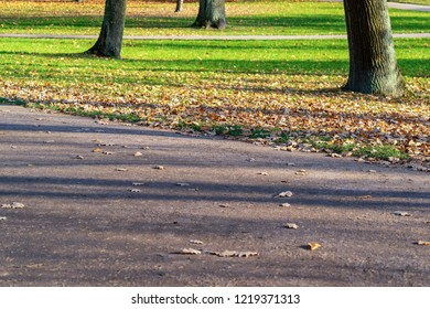 fragment of the pedestrian road in the park closeup for a natural background
