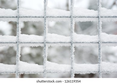 Fragment of snow covered latticed fence