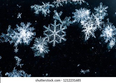 fragment of snow texture Snowflakes close-up. crystal clear ice. macro photo. winter. shallow depth of field. Christmas background for layout. christmas theme.