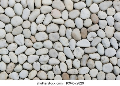 Fragment of the wall with white pebbles