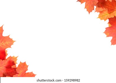 Frame with autumn maple leaves