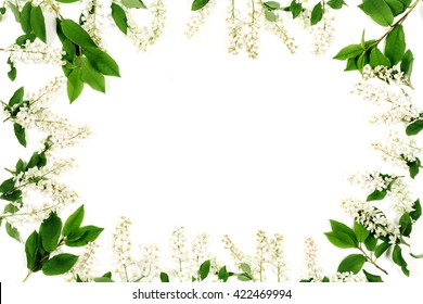 Frame of bird-tree flowers and green leaves isolated on the white. Top view, flat lay