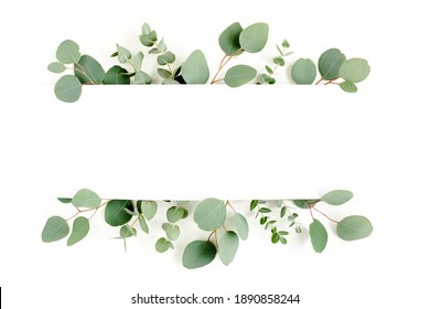 Frame, border made of green leaves eucalyptus isolated on white background. flat lay, top view