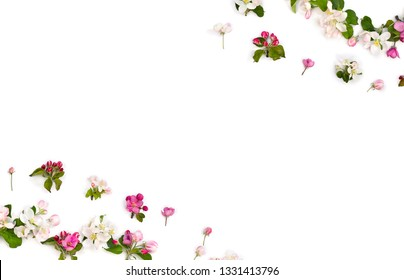 Frame of flowers apple tree on white background with space for text. Top view, flat lay