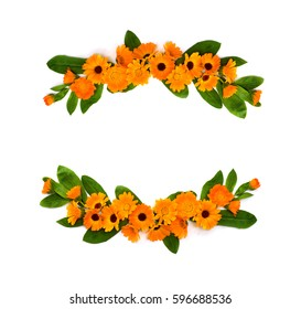 Frame of flowers with leaves Calendula (Calendula officinalis, pot marigold, ruddles, garden marigold, English marigold) on a white background with space for text. Top view, flat lay. Medicinal herb.