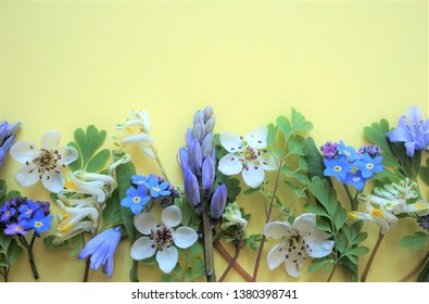 Frame of flowers, room for text