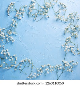 Frame from fresh white gypsofila  flowers on blue textured background. Top view. Flat lay. Place for text. Square image.
