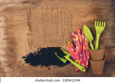 Frame of garden supplies and green plants. Spade flower on a wooden dark background aged. The concept of spring
