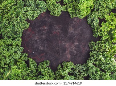 Frame of green Kale on dark background with copy space