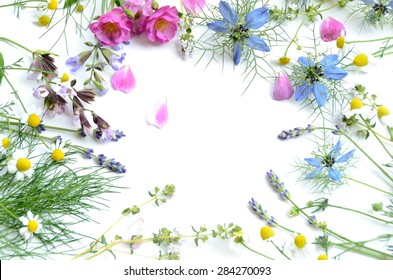 frame of herbal flowers on white background