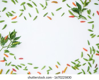 Frame of hot chilli with green leaves on white background. Concept of cooking spicy Thai food. Top view, space for text