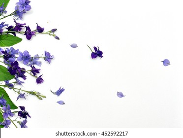 Frame of lavender flowers on a white background