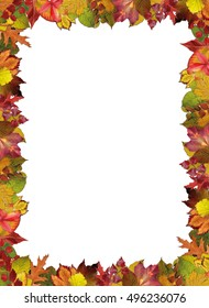 Frame made from autumn leaves
