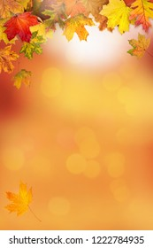 A frame made with autumn leaves and sunny bokeh background