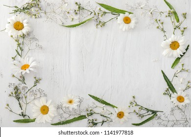 Frame made of beautiful chamomile flowers on wooden background
