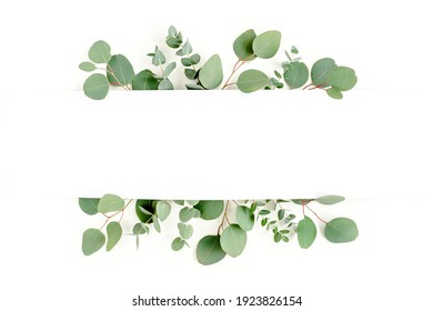 Frame made of branches eucalyptus and leaves isolated on white background. Flat lay, top view