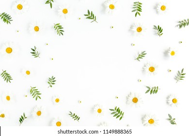 Frame made of chamomiles, leaves and petals on white background. Flat lay, top view floral background.