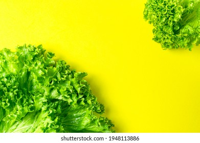 Frame made of Fresh green lettuce leaves on bright yellow background flat lay top view. Creative background with salad, healthy vegetarian food, eco products, vegetable, diet, vitamins. Food concept