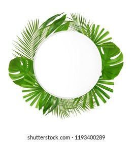 Frame made of green tropical leaves on white background