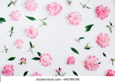 Download 63 Background Pink With Flowers Paling Keren