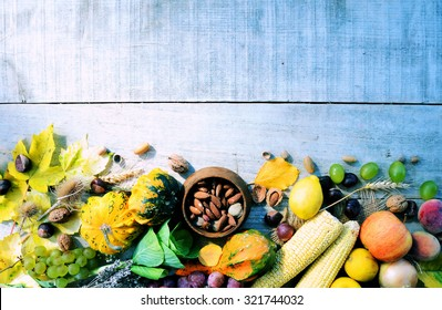 Frame from pumpkins and organic vegetables, background for text or logo,cooking concept