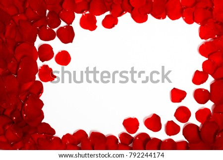 Frame Red Rose Flower Petals Roses Stock Photo (Edit Now) 792244174 ...