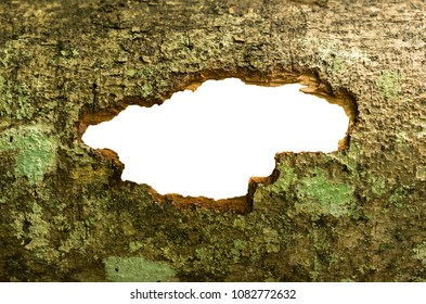 Frame rough Wood texture with cracked hole