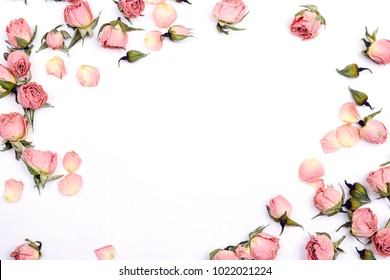 Frame of small pink roses on white background. Place for text. Flat lay, top view.